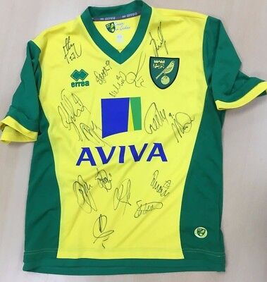 Official Norwich City Fc 2013/14 Signed Shirt