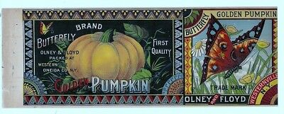 Olney & Floyd Butterfly Golden Pumpkin Can Label