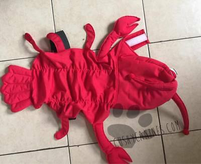 Dog Lobster Costume Halloween Fancy Dress Large or X Large