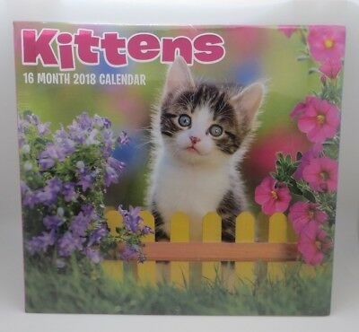 Kittens Kitty 2018 Wall Calendar 16 Month - incl last 4 mo 2017 BNIS SRP $9.95