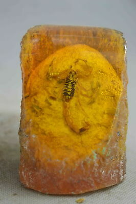 Collectable Handwork Old Amber Inner Inlay Scorpion Ancient Souvenir Rare Statue