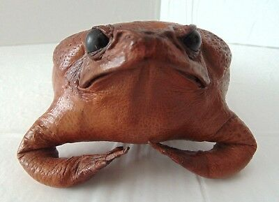 "Vintage Authentic Taxidermy Tanned Leather Stuffed Bullfrog Toad Mint 7"" Long"