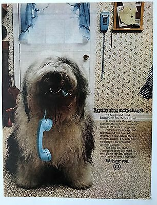 Vintage BELL TELEPHONE Print Ad OLD ENGLISH SHEEPDOG DOG CHEWS CORD 9 x 12