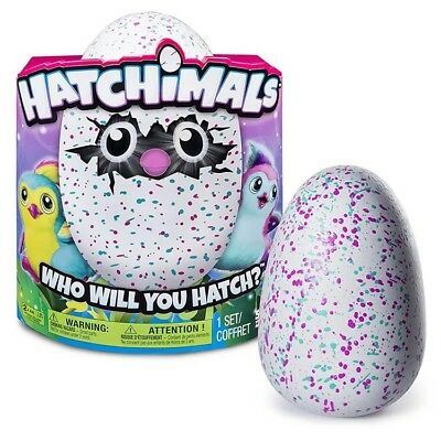 Hatchimals Hatching Egg Draggle by Spin Master - Purple/ Green/ Red