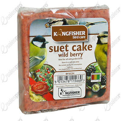 Wild bird suet cake, WILD BERRY mix. Buy 1 or 2 with discounts. From kingfisher