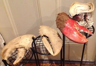 GIANT REAL MAINE LOBSTER CLAWS + EXTRA PAINTED DECORATED CLAW 1970's + VERTEBRAE