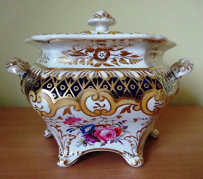 19c ENGLISH PORCELAIN RIDGWAY HAND DECORATED SUGAR BOWL AND COVER