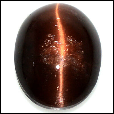 41.58Cts Natural Brilliant~ Scapolite Cat's Eye Oval Cabochon Gemstones 109-25