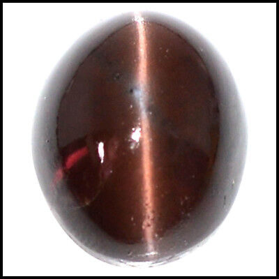24.09Cts NATURAL BEAUTY SCAPOLITE CAT'S EYE OVAL CABOCHON LOOSE GEMSTONE 109-02