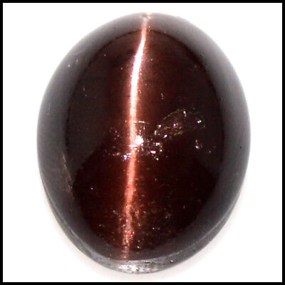 27.23Cts NATURAL BROWN! SCAPOLITE CAT'S EYE OVAL CABOCHON GEMSTONE 109-41