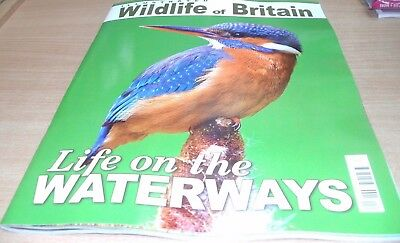 Illustrated Wildlife of Britain magazine #4 2017 Life on the waterways