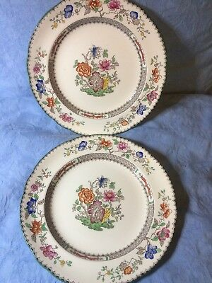 Two Copeland Spode 'Chinese Rose' dinner plates