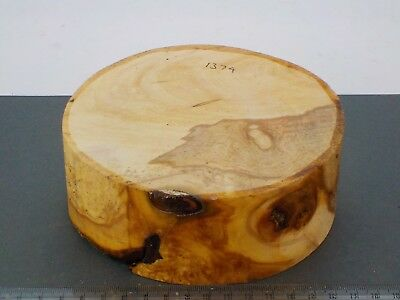 English Apple wood turning bowl blank.  140 x 52mm. 1374