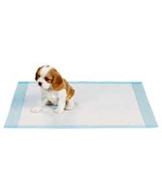 100 Dog Puppy 17x24 Pet Disposable Pee Training Wee Wee Pad Underpad Light