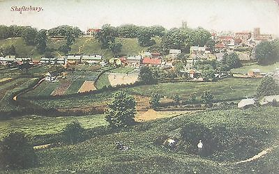 Elevated View Of Leafy Shaftesbury Dorset 1905 Pc