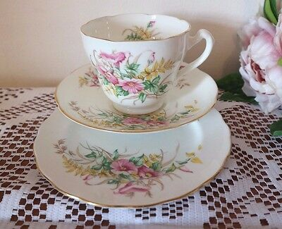 ADDERLEY CHINA Pink Floral  CUP SAUCER PLATE Beautiful Trio TEA SET