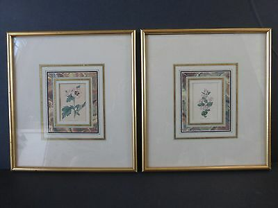 Lyons Ltd Antique Framed Floral  Hand Colored Engravings English Circa 1820