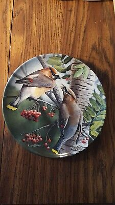 Cedar Waxwing collector plate by Knowles 1987 Kevin Daniel