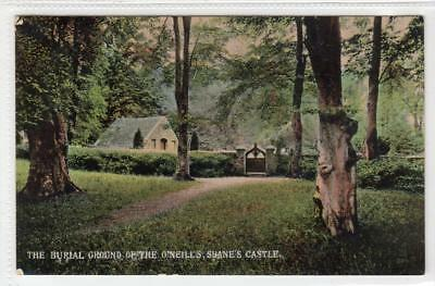 BURIAL GROUND OF THE O'NEILLS, SHANES CASTLE: Antrim N.Ireland postcard (C31741)