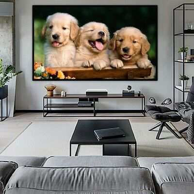 """84"""" 16:9 Projector Projection Portable Screen Matte Black Pull Down Home Movie"""
