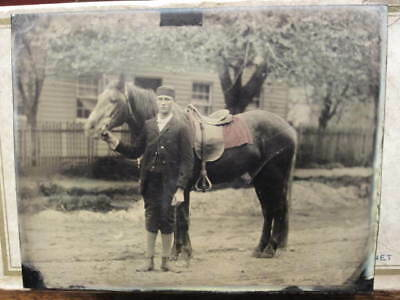 Antique Colored Half Plate Tintype Boy with Horse - Beautiful - Large 1/2 Plate