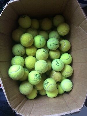 30 Used Tennis Balls in excellent condition!