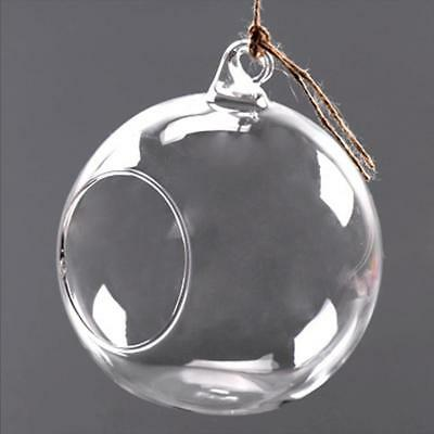 Clear Glass Flowers Plant Table Hanging  Vase Ball Terrarium Container Bottle