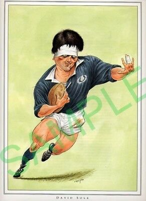 Framed picture of David Sole by John Ireland, Rugby