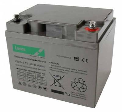 FNC12420 Sealed Lead Acid VRLA Battery 12V 42Ah SLC42-12