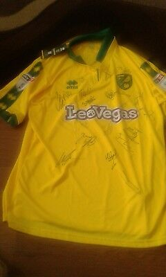 Norwich City Signed 2017/2018 Shirt. The Canaries.xxxl