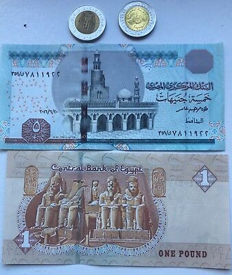Egyptian Money Collection