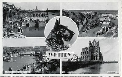 PC01254 Whitby. Multi view