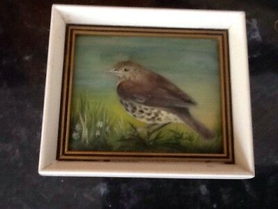 Miniature Painting From The Hamilton Collection Song Thrush
