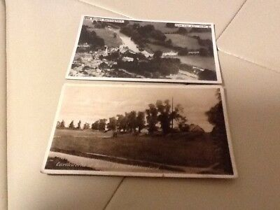 2 Real Photo Postcards Of Wallingford Oxen Pre 1930 S ?