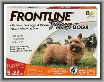 Frontline Plus Flea & Tick Control for Small Dogs 5-22 lbs, 8 Doses Box !