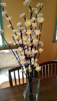 Blossom Light Branches (decorative Indoor lights)