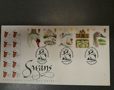 Swans First Day Cover Unaddressed. 600th Anniversary Abbotsbury Swannery