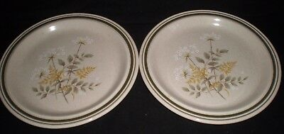 """Vintage Royal Doulton Lambeth Ware """"will 'o The Wisp"""" 1977 Dinner Plates X 2(112"""