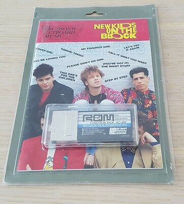 Casio ROM PACK 282-New Kids on the Block-Very rare