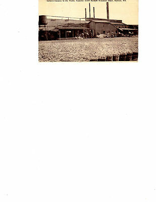 Delaware Seaford Cannery 1912