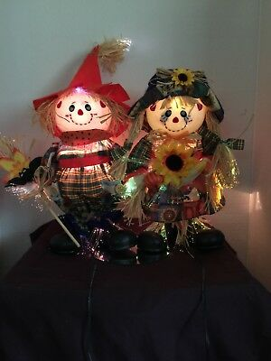 Fiber optic scarecrow pair with lots of Lights Great Decoration! A/C adaptor