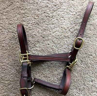 Dark Brown Leather Halter - Cob Size