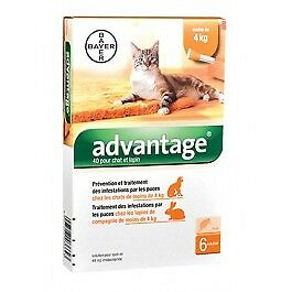 Advantage 40 chat et lapin de 1 à 4 kg - 6 pipettes