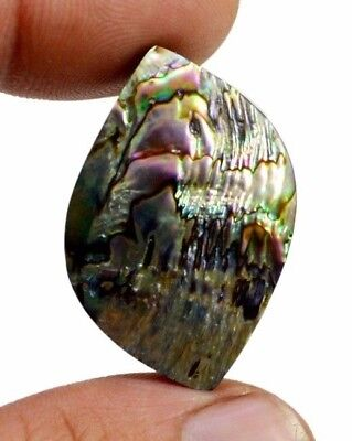 31ct Natural Australian Doublet Abalone Shell Uk Fancy Shape Cabochon Gemstone