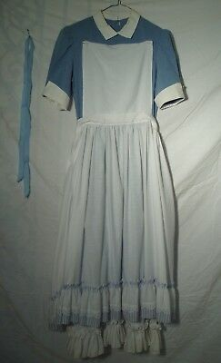 Adult Story Book Alice Costume