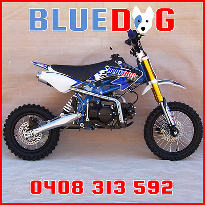 Pit Bike 125cc Many Extras 12/14 Freight INCLUDED To VIC,NSW,SA Bris Metro Blue