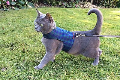 Mynwood Cat Walking Jacket Harness BLACK WATCH TARTAN Adult cat or Kitten