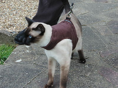 Mynwood Cat Walking Jacket Harness Holster CHOCOLATE FLEECE Adult cat or Kitten