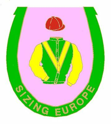 Sizing Europe enamel badge - in his racing colours