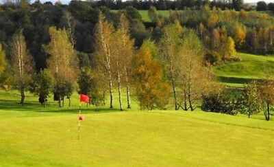 Golf * 4 Ball Round Of Golf * Brookdale Golf Club * Mancs * Charity Auction